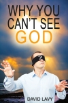 Why You Can t See God